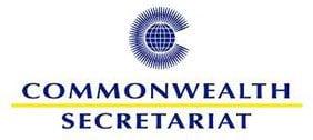 Commonwealth News Internship