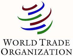 wto-youth-embaixador-programa