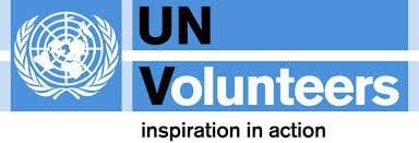 UNV ONLINE VOLUNTEERING AWARD 2013