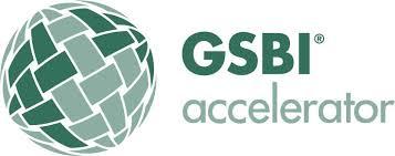 2014-gsbi-accelerator-programme