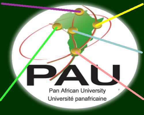Pan African (African Union) University 2019/2020 (Masters