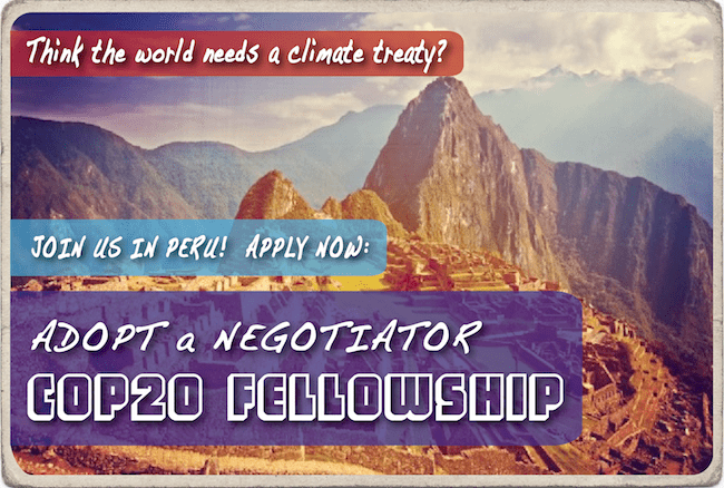 cop20-fellowship