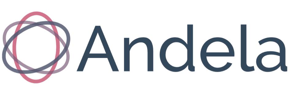 andela-it-training-for-nigerians