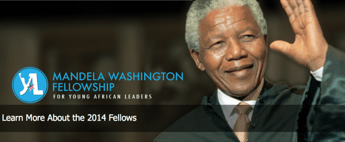 2014 Washington Mandela Fellowship