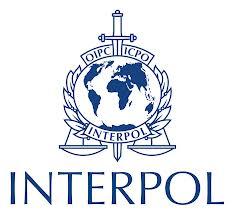 interpol-internship-2014