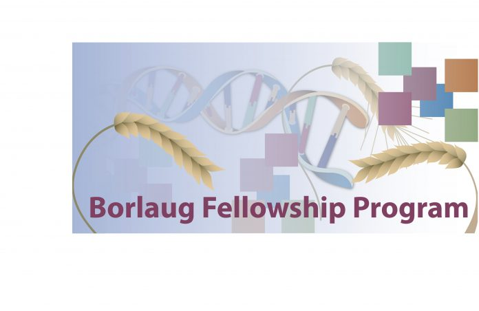 2014_Borlaug_fellowship_program