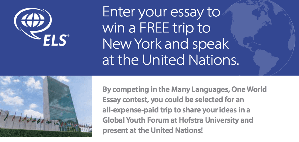 united nations academic impact global youth forum student  2016 united nations academic impact global youth forum student essay contest all expense paid to speak at the united nations opportunities for