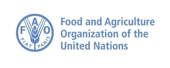 The United Nations Food And Agriculture Organization Hunger