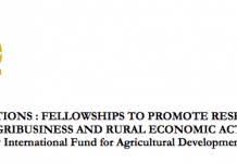 """FELLOWSHIPS TO PROMOTE RESEARCH ON """"YOUTH ENGAGEMENT IN AGRIBUSINESS AND RURAL ECONOMIC ACTIVITIES IN AFRICA"""