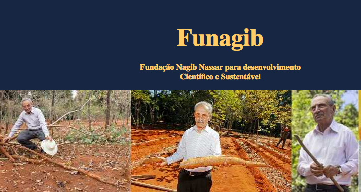 The foundation FUNAGIB 2018 Scholarship for African students working on cassava (Funded to Brazil)