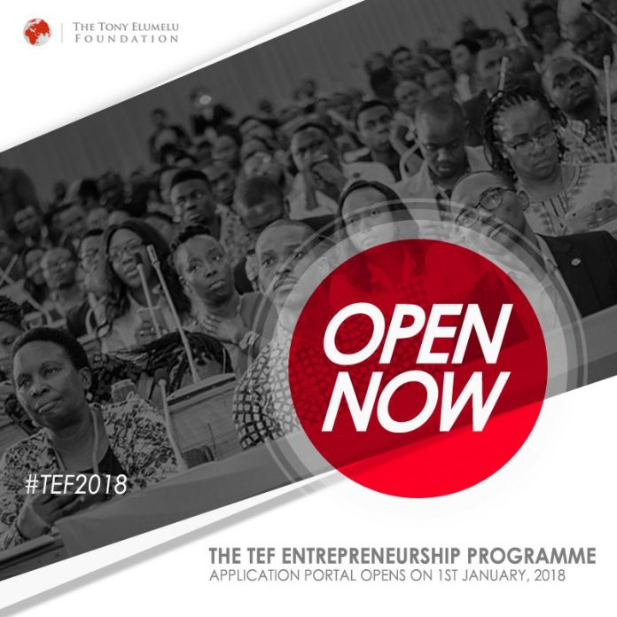 Tony Elumelu Entrepreneurship Programme (TEEP) 2018