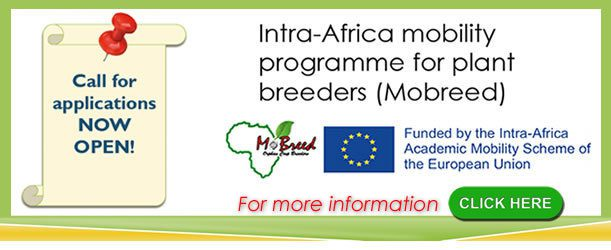 Mobility for Breeders in Africa (MoBreed) Masters & PhD Scholarships 2018 for Africans Students (Fully Funded)