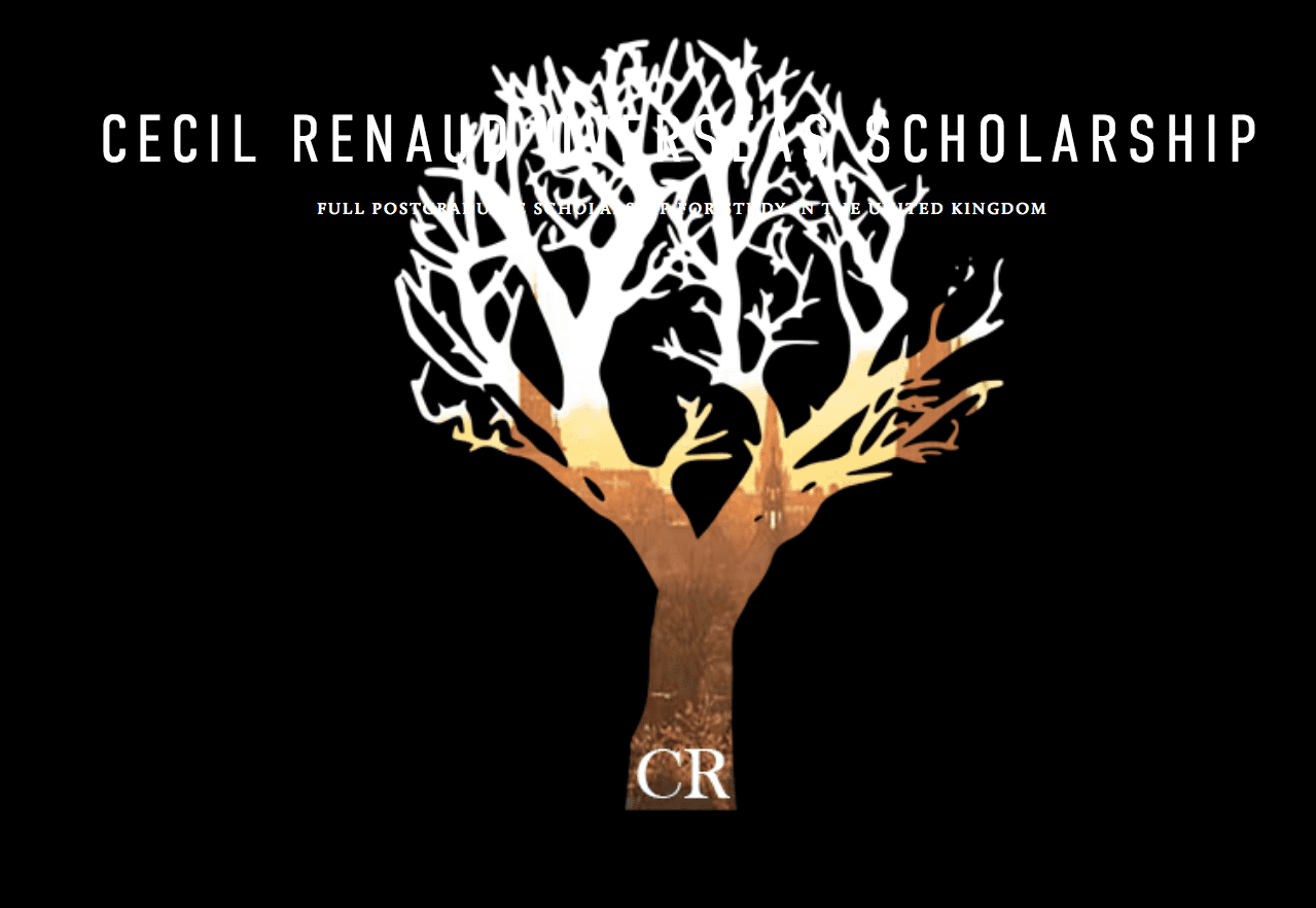 CECIL Renaud Overseas Scholarship 2021 for young South ...