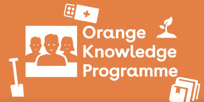 Image result for Orange Knowledge Programme in The Netherlands