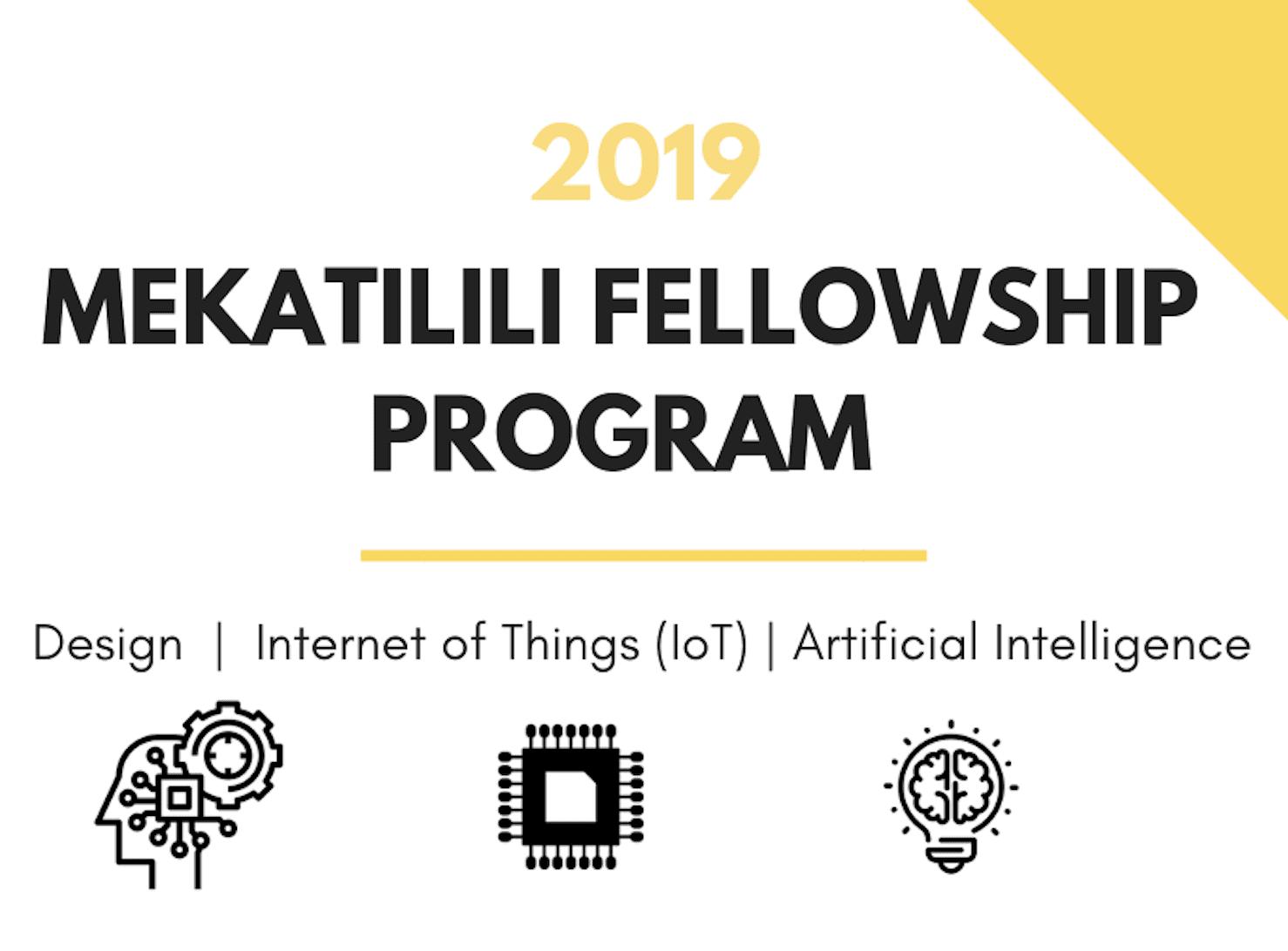 The Mekatilili Fellowship Program (MFP) 2019 for innovative