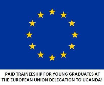 European Union Traineeship in EU Delegations worldwide for young graduates