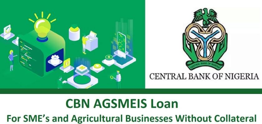 Central Bank of Nigeria (CBN) Agri-Business/Small and Medium Enterprise Investment Scheme (AGSMEIS) 2021 for young Nigerians. | Opportunities For Africans