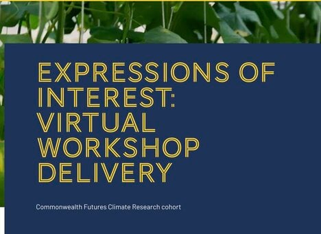 Expressions of interest: Virtual workshop delivery