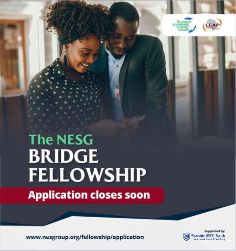 nesg-bridge-fellowship