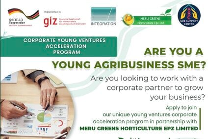 corporate-young-ventures-acceleration-program
