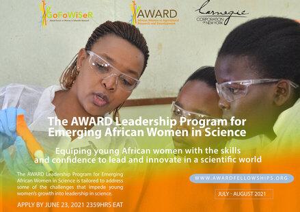 award-emerging-leadership-fellowship