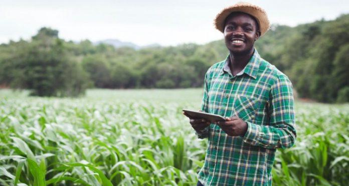african-food-fellowship