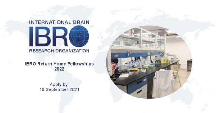 ibro-fellowship